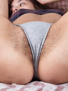 Hairy Panties Pics